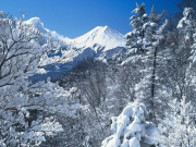Snow covered Mt. Fuji in winter