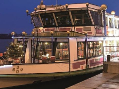 evening_vienna_dinner_cruise_danube_river4