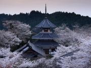 Kimpusen-ji Temple