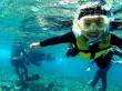 アンダゴ 青の洞窟 熱帯魚02