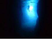 アンダゴ 青の洞窟 熱帯魚01