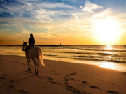 Sunset_Beach_Horseback_Riding