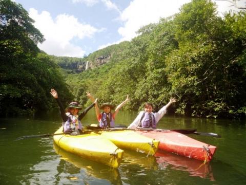 Kayaking through mangroves in Okinawa
