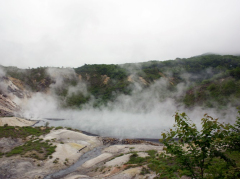 Steam rising from one of the Jigokudani springs
