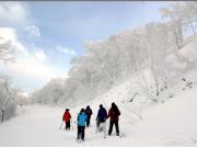 スノーシュー樹氷IMG_0667-修