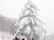 スノーシュー樹氷IMG_0684