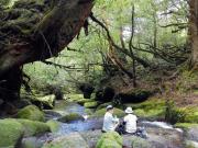 屋久島ネイチャー白谷太鼓岩1-640