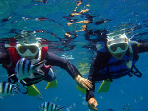 Family snorkeling with tropical fish all around