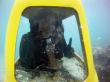 美ら海スクーター2