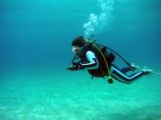 奄美大島ダイビングエンドレスブルー6