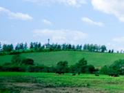ふれあい牧場(ファームズ千代田)14