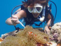 ダイビング 海猫03