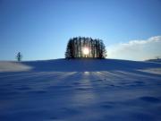 白金の森一日コース04 (2)