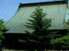 壮大な伽藍が特徴の専称寺