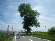 60km 3