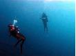 Diving club海音