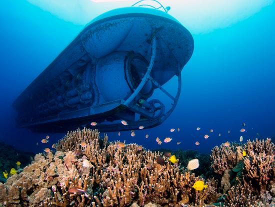 Hawaii Submarine Tours Kona