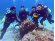 Scuba diving at Okinawan coral reefs