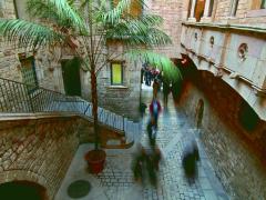 BarcelonaWalkingPicasso-T24-c