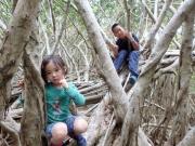 森歩き マルベリー03
