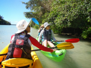 mangrovekayak_7