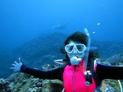 Coco Dive19
