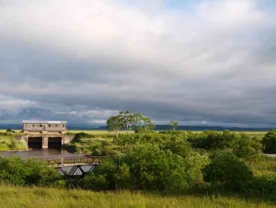 観光タクシー 釧路湿原いいとこどり 1時間半コース<釧路市発 ...