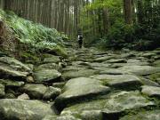 熊野古道伊勢路・馬越峠エコツアー1
