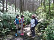 熊野古道伊勢路・馬越峠エコツアー3