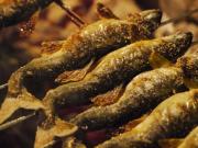 鮎の塩焼きー1