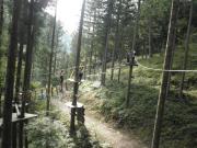 森のニンジャ6