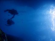 ナイトダイビング
