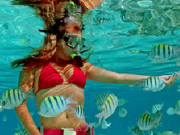 Snorkeling_Girl_with_Fish