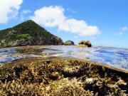 沖縄 海の学校04