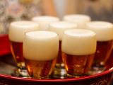 Brussels Beer tasting tour and food pairing  (16)