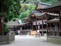 拝殿と巳の神杉