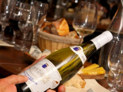 Wine-and-Cheese-Lunch-4-495x400