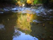 西明寺もみじが映る川