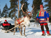 Reindeer_and_sami_culture