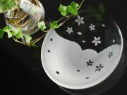 小皿体験-サクラ