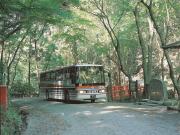 奈良交通5