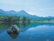 夏の知床五湖