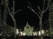 20151112185021_494490_7_Christmas_Illumination_(3)_