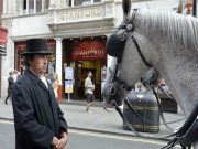 Horse_Drawn_Tour_of_London_Christmas_Lights_4364_15697