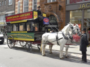 Horse_Drawn_Tours_of_London_4378_15738