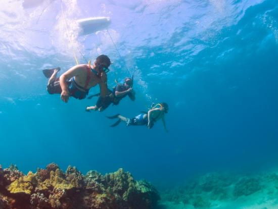 Molokai Adventures Tours