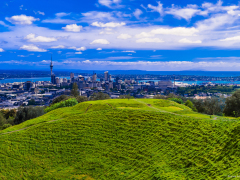 Mt.Eden_Blaine Harrington