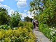 Beatrix Potter - Hill Top Gardens