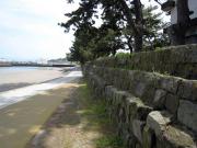 今和泉海岸