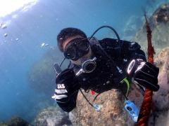 体験ダイビング8